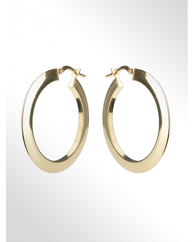 Hoop earrings in sterling...