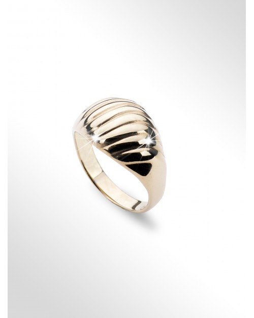 Silver ring (silver ring Silberring)